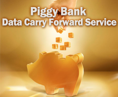 Piggy Bank Data Carry Forward Service