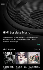 "New ""Hi-Fi lossless music"""